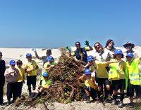 """Projeto """"Cidadania pela Natureza – Conservação de Áreas Protegidas"""" remove 1.500 quilos de chorão da Praia da Barrinha"""