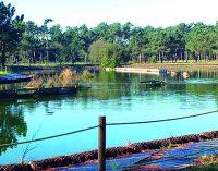 Parque Ambiental do Buçaquinho distinguido nos Green Project Awards 2016