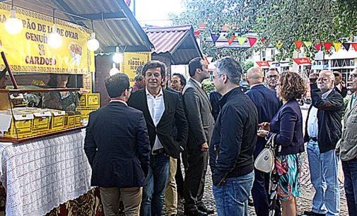 Jardim do Cáster recebeu sétima edição do Festival do Pão-de-Ló de Ovar