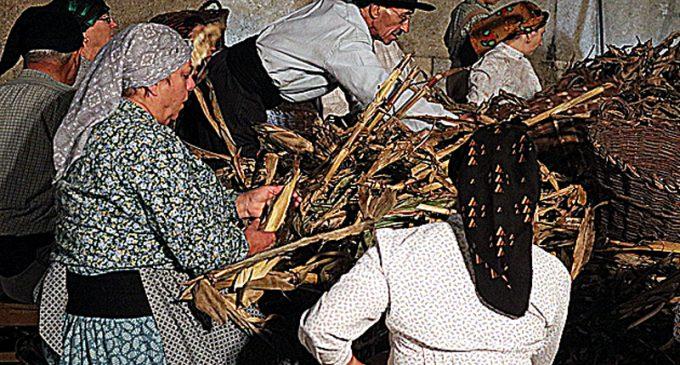 Câmara Municipal de Ovar celebra o Património com a realização de uma desfolhada