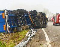 Despiste de camião na A29 provocou vítima de média gravidade